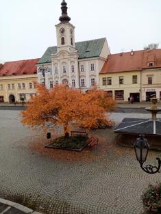 Podzimní výhled zknihovny